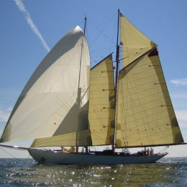Unique tender sale opportunity! Classic yacht Doriana for sale